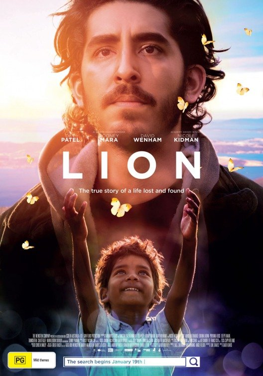 ლომი / Lion