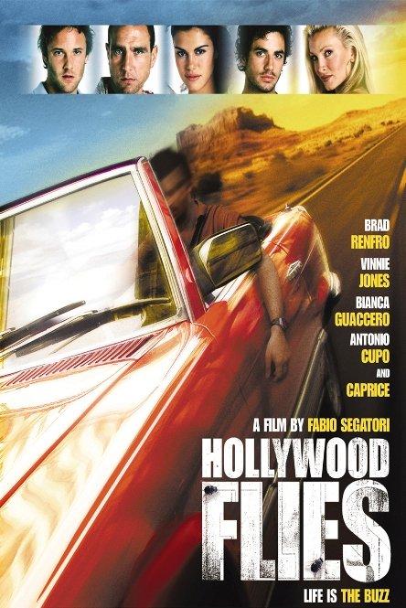 მძარცველები ჰოლივუდიდან / Hollywood Flies