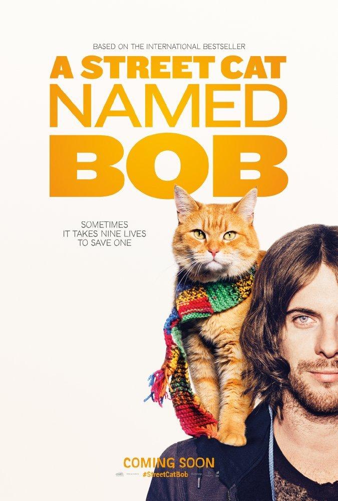 ქუჩის კატა სახელად ბობი A Street Cat Named Bob