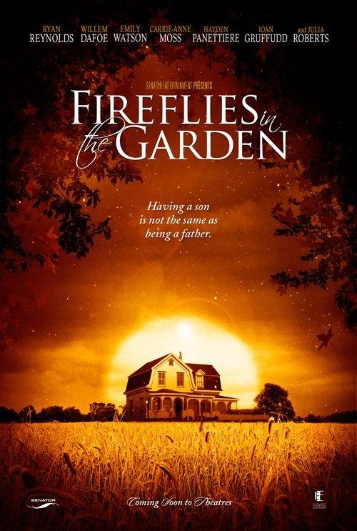 ციცინათელები ბაღში / Fireflies in the Garden