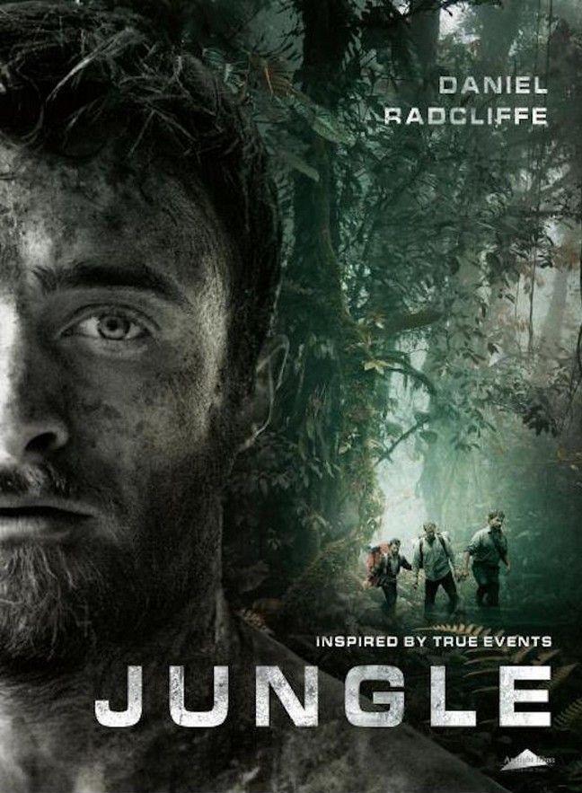 ჯუნგლები / Jungle