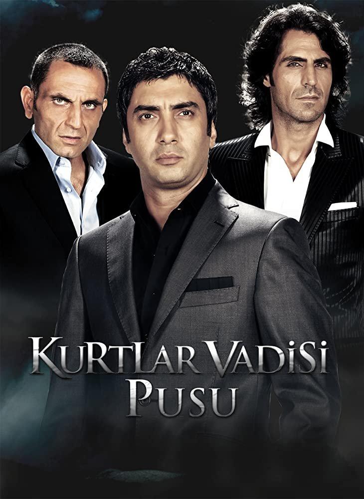 მგლების ხეობა: ხაფანგი Valley of the Wolves: Ambush (Kurtlar Vadisi: Pusu)