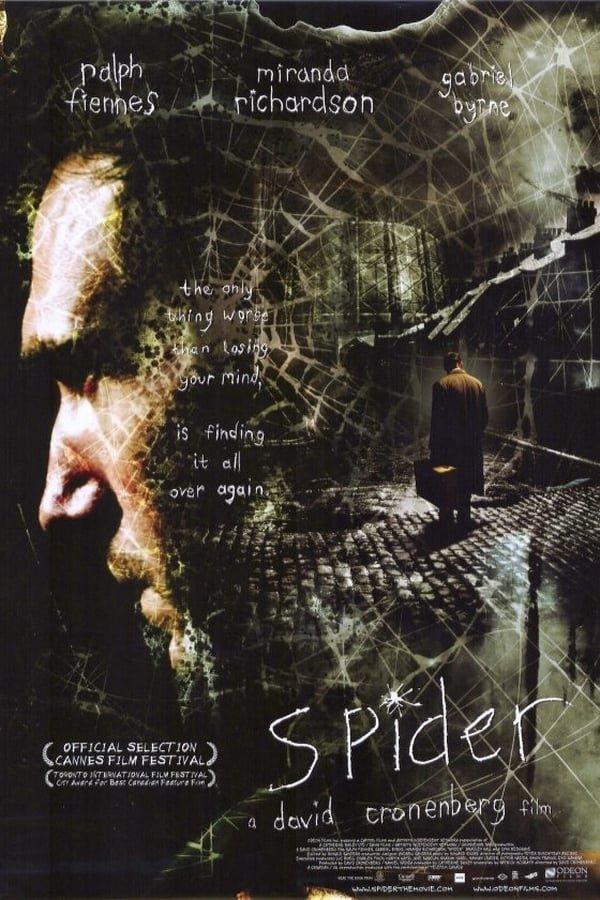ობობა / Spider