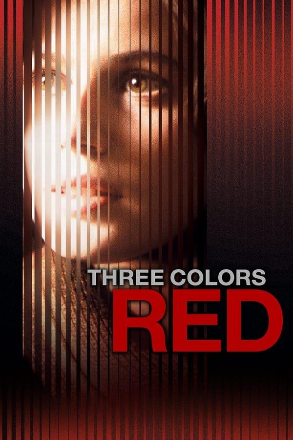 სამი ფერი: წითელი Three Colors: Red (Trois couleurs: Rouge)