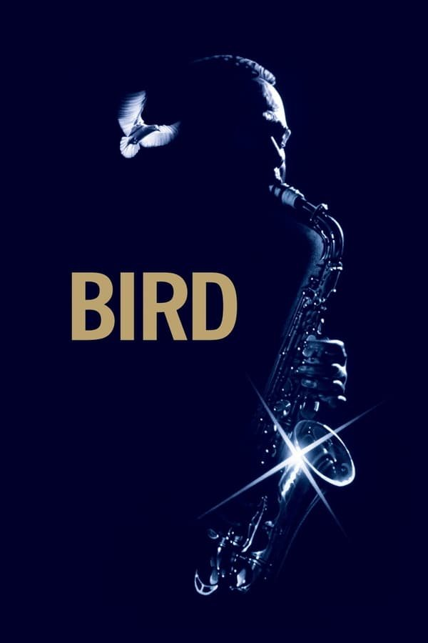 ჩიტი / Bird