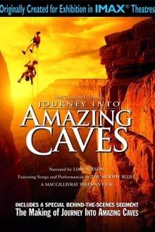 მოგზაურობა საოცარ გამოქვაბულებში Journey Into Amazing Caves