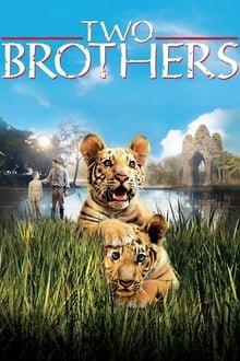 ორი ძმა Two Brothers