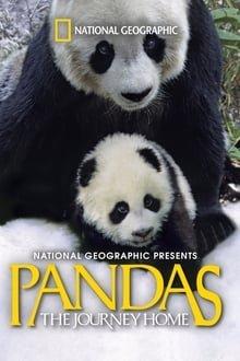პანდები: შინ დაბრუნება Pandas: The Journey Home