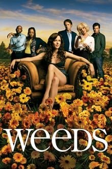 მოსაწევი სეზონი 8 Weeds Season 8