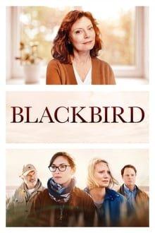 შავი შაშვი Blackbird