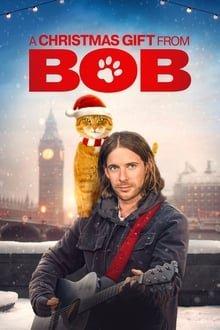 საშობაო საჩუქარი ბობისგან / A Christmas Gift from Bob