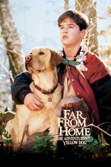 სახლიდან შორს: ყვითელი ძაღლის თავგადასავალი / Far from Home: The Adventures of Yellow Dog