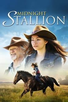შუაღამის ულაყი / Shuagamis Ulayi / Midnight Stallion