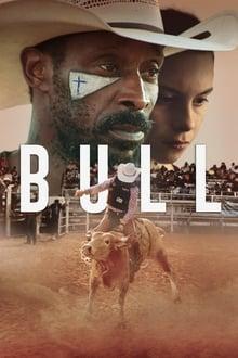 ხარი / Xari / Bull